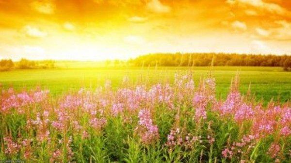 21 червня - найдовший день у році, день літнього сонцестояння